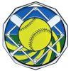 DCM Medal -Softball  Decagon Colored Medallions