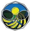 DCM Medal -Tennis Decagon Colored Medallions