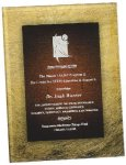 Gold & Burgundy Acrylic Art Plaque Award Acrylic Plaques