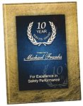 Gold & Blue Acrylic Art Plaque Award Acrylic Plaques