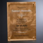Bronze Alloy Plaque Clear Optical Crystal Awards