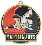 High Tech Medal -Martial Arts  Color-Graph Medallions