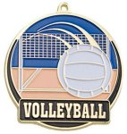 High Tech Medal -Volleyball Color-Graph Medallions