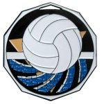 DCM Medal -Volleyball Decagon Colored Medallions