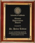 Rosewood Piano Finish Plaque - Elegant Face Plate Employee Awards