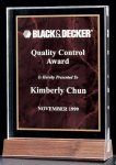 Acrylic Award with a Ruby Marble Center Marble & Stone Awards
