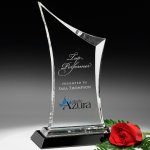 Coburn Award Sales Awards