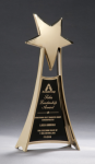 Star Casting Trophy in Gold Tone Finish Star Awards